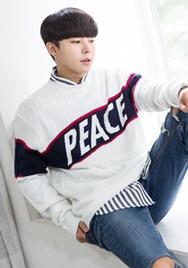 1区2017秋季新款|韩国发货|aboki品牌韩国时尚靓丽男士帅气针织衫(2017.9月)