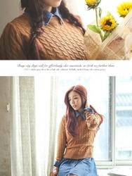 1区韩国代购正品验证bongjashop-BJKN00755945-韩版人气流行麻花纹百搭针织衫