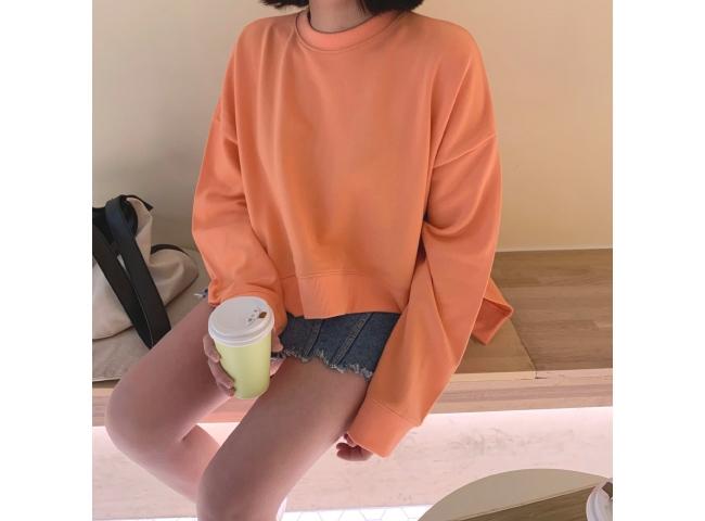 1区韩国本土服装代购(韩国圆通直发)candyglow-卫衣(2019-03-20上架)