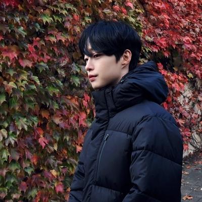 1区韩国本土服装代购(韩国圆通直发)tomonari-棉服(2018-11-20上架)